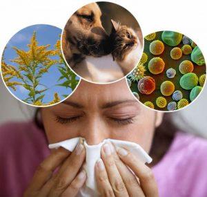 Паразиты провоцируют появление аллергии