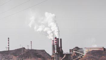 Какие изменения в мозге вызывает загрязненный воздух?