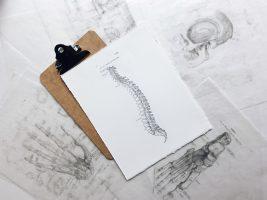 Российские исследователи предлагают биоразлагаемые импланты для фиксации костей
